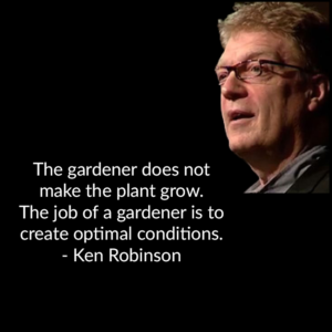 The gardener does not make a plane grow. The job of a gardener is to create optimal conditions.